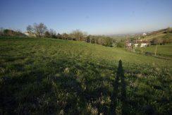 Terrain à Lotir de 5 lots Montauban SudA.B.I - Agence Bourdarios Immobilier - A.B.I  Agence Bourdarios Immobilier-1