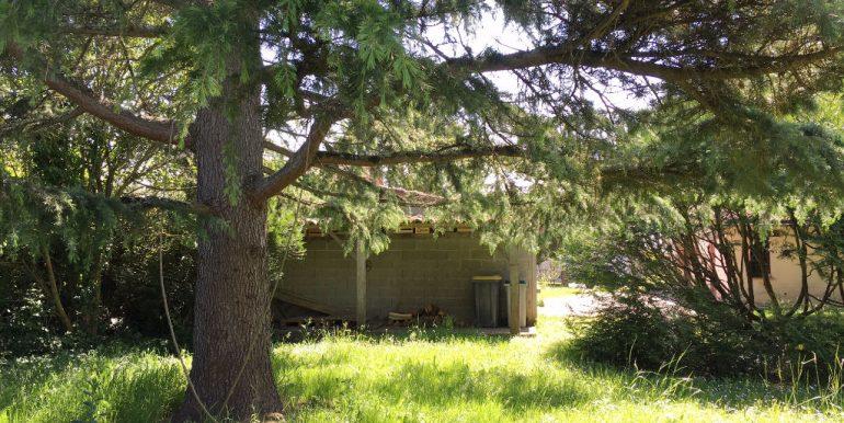 Maison 1900 - 5 Km de Montauban Ouest - 5 pièce(s) 145.68 m2A.B.I - Agence Bourdarios Immobilier -  A.B.I  Agence Bourdarios Immobilier-14