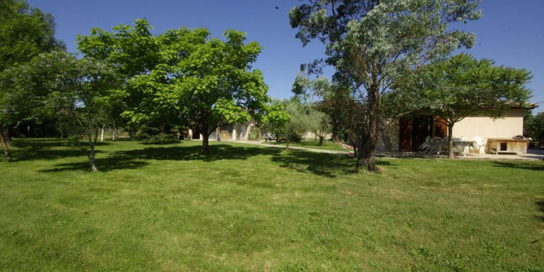 grande dépendance dans un beau jardin clos - Montauban OuestA.B.I - Agence Bourdarios Immobilier -  A.B.I  Agence Bourdarios Immobilier-4