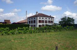 Maison proche Caussade 8 pièce(s) 230 m2A.B.I - Agence Bourdarios Immobilier -  A.B.I  Agence Bourdarios Immobilier-1