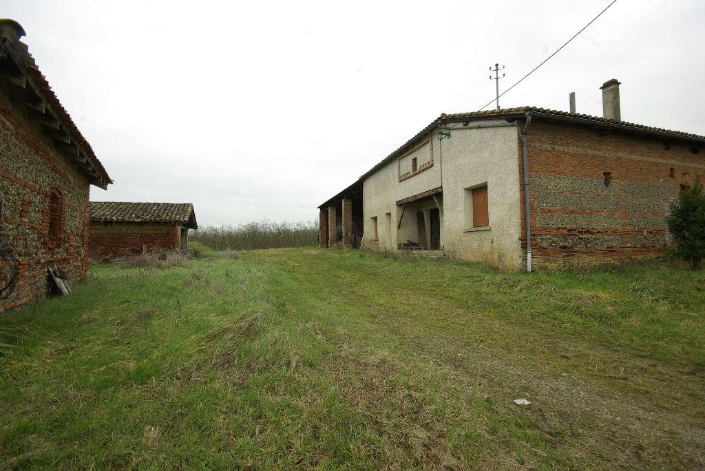 CORPS DE FERME avec Dépendances et Hangar près de Montech