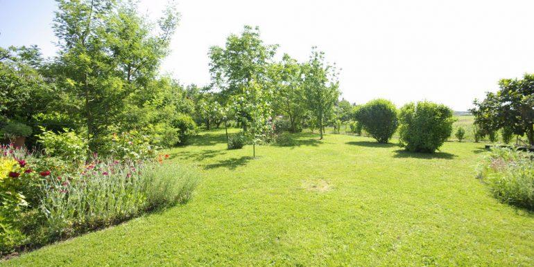 spacieuse T 7 avec jardin et dépendances - Montauban OuestA.B.I - Agence Bourdarios Immobilier - A.B.I  Agence Bourdarios Immobilier-7
