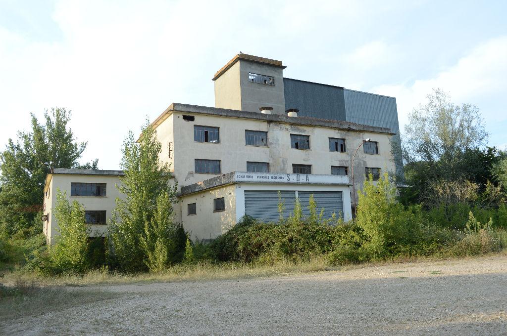 Bâtiment industriel, Ancien moulin