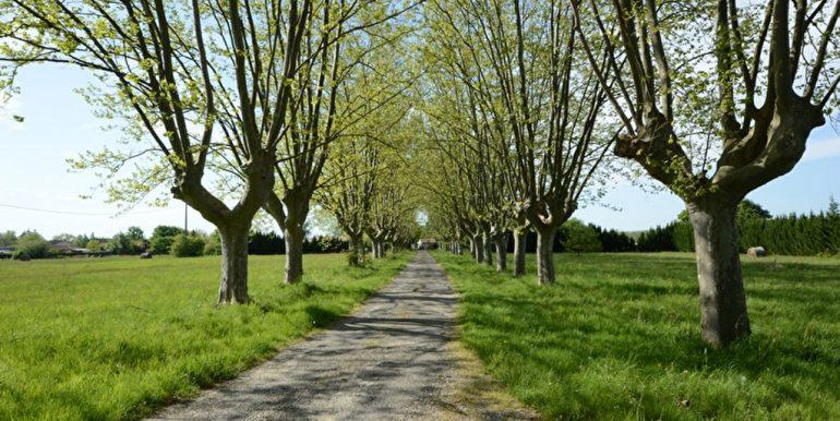 Belle propriété mixte Montauban NordA.B.I - Agence Bourdarios Immobilier -  A.B.I  Agence Bourdarios Immobilier-9