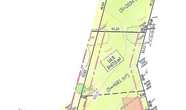 Terrain 6715 m2 Saint MartialA.B.I - Agence Bourdarios Immobilier - A.B.I  Agence Bourdarios Immobilier-4